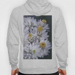 Macro photo white flower Hoody