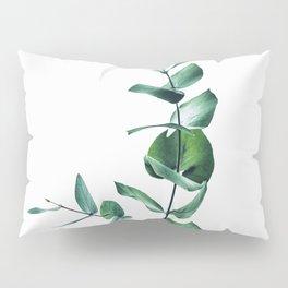 Eucalyptus branch Pillow Sham