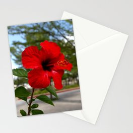 Red Flower Bloom Stationery Cards