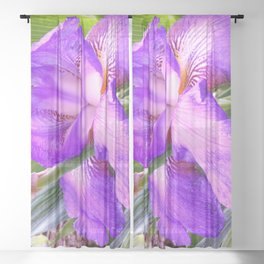 In Honor Of An Amazing Father: My Dad's Iris Sheer Curtain
