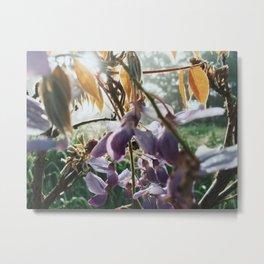 Mess of Wildflowers Metal Print