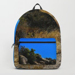 Dust and Dirt Backpack