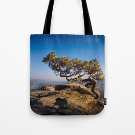 Crooked Tree in Elbe Sandstone Mountains Tote Bag
