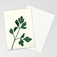 parsely Stationery Cards
