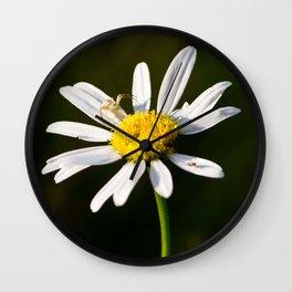 Tiny Daisy And Crab Spider Wall Clock