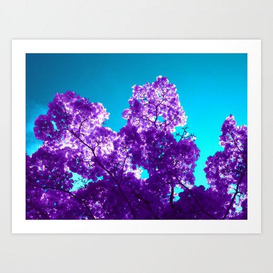 purple maple tree VI Art Print