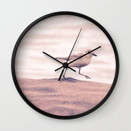 Dotterel  Wall Clock