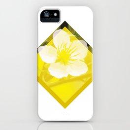 Hoa Mai Yellow Apricot Blossom Vietnam Lunar New Year iPhone Case