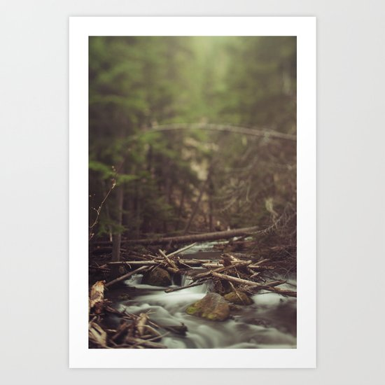 Cold Spring Creek Art Print