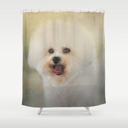 Little Cotton Ball - Bichon Frise Shower Curtain