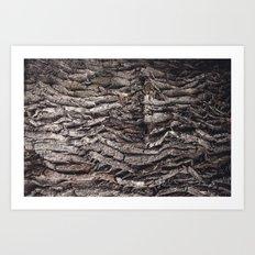 Oak tree trunk Art Print