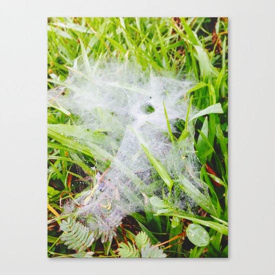 Malopacus Web Canvas Print