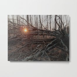 Tree Arms Metal Print
