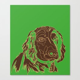 Working cocker spaniel Canvas Print