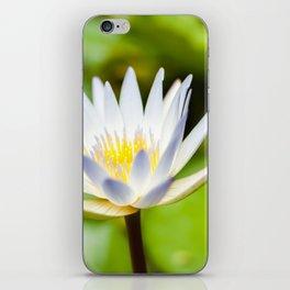 Single White Lotus Water Lily of Kauai, Hawaii iPhone Skin