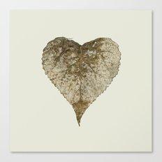heart nature Canvas Print