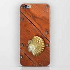 Gold shell iPhone & iPod Skin