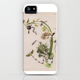 Green Fascinator iPhone Case