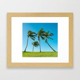 Coconut Palm Trees Framed Art Print