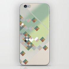 21.34 iPhone Skin