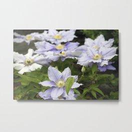 Longwood Gardens - Spring Series 157 Metal Print