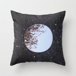 Reflections, One Throw Pillow