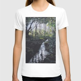 Shimna River, Newcastle, County Down, N. Ireland T-shirt