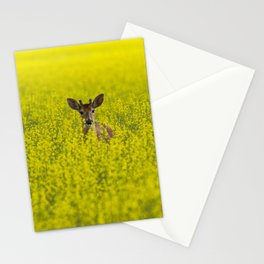 Buck in Canola Stationery Cards