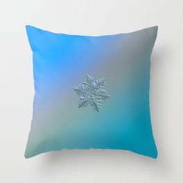 Real snowflake - 13 February 2017 - 5 alt Throw Pillow