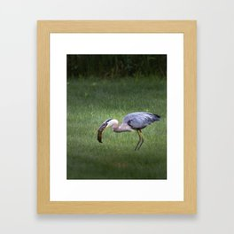 Hungry no more Framed Art Print