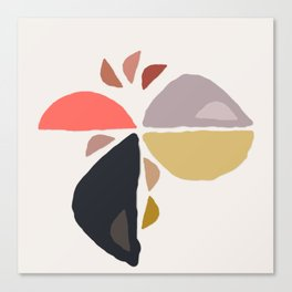 Winking Wedge Funny Face Abstract Birdie  Canvas Print