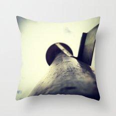 Eyes Aloft III Throw Pillow