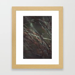 Soon it will be cold enough Framed Art Print