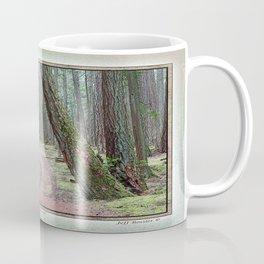 DOUGLAS FIR FOREST ON MOUNT PICKETT ORCAS ISLAND Coffee Mug