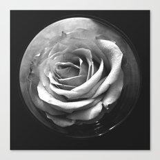 MOON ROSE Canvas Print