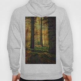 Through the woods Hoody