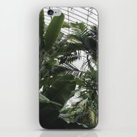 plants iPhone & iPod Skins featuring Plants by Cynthia del Rio