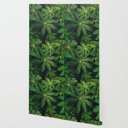 Floral Foliage Wallpaper