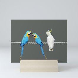 Macaw - Kakadu sitting on rope Mini Art Print