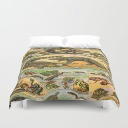 Reptiles Chart Nature Vintage Snake Turtle Alligator Duvet Cover