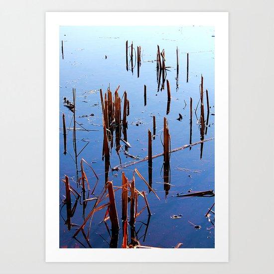 Swamp Scape Color Art Print