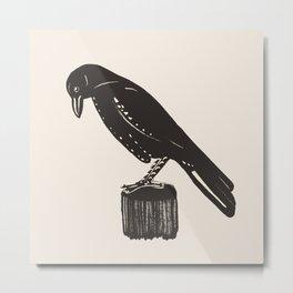 Crow - Corvid Metal Print