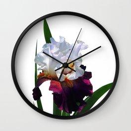 Iris 'Connection' Wall Clock