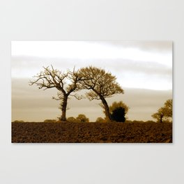 Lean on Me - Sepia Trees Canvas Print