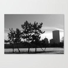 Pine Trees of Boston Canvas Print