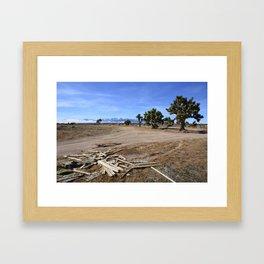 Joshua Tree Skyline Framed Art Print