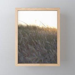A Carolina Sunset Framed Mini Art Print