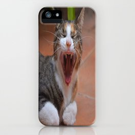 Liza the cat with a big smile iPhone Case