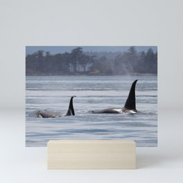 Brothers T46D and T46E Killer Whales Mini Art Print