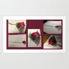 rosita Art Print